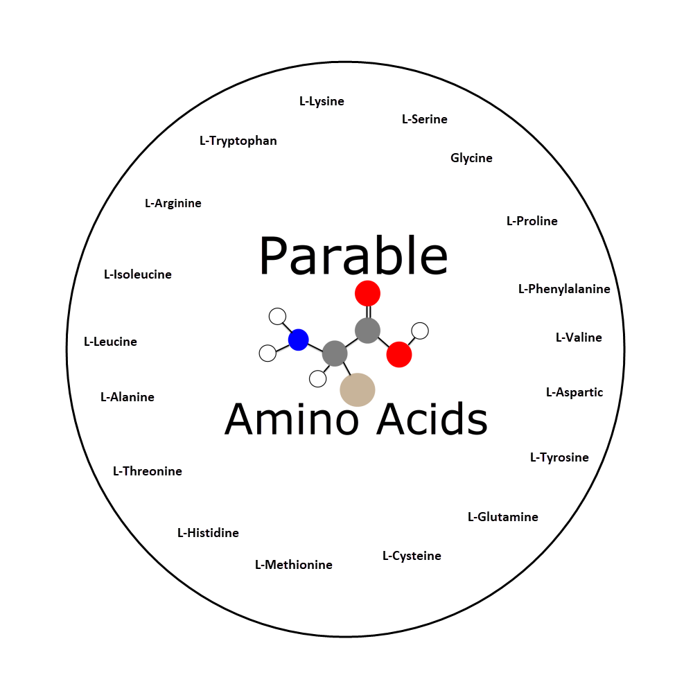 Parable Amino Acids Whats inside